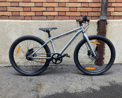 Early Rider Belter 24''