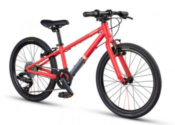 """Kindervelo MTB Cycletech Moskito 20"""" fire matt"""