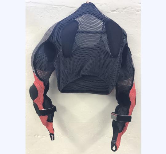 Dainese Rücken Prodektor
