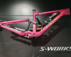 Specialized Enduro SW FRM