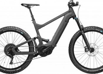 Riese & Müller Delite mountain touring | 2022