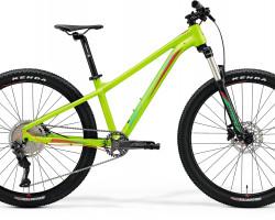 Matts J. Champion Silk Green Greenred Xs - 13.5