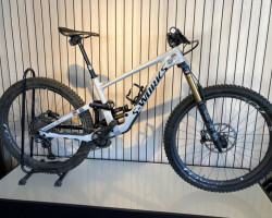 Specialized Enduro S-Works Carbon 29
