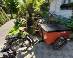 Bakfiets Cargo Trike Wide CRUISER